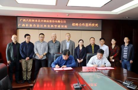 八桂种苗公司与广西林科院签署战略合作框架协议