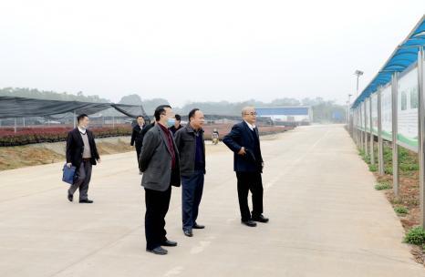 公司股东代表及董事调研台湾花卉园苗圃