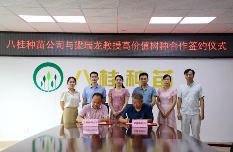 八桂种苗公司举行高价值树种合作签约仪式